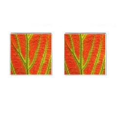 Unique Leaf Cufflinks (Square)