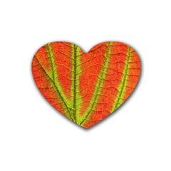 Unique Leaf Rubber Coaster (Heart)
