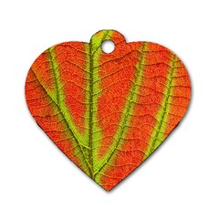 Unique Leaf Dog Tag Heart (One Side)