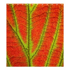 Unique Leaf Shower Curtain 66  x 72  (Large)