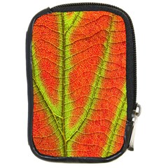 Unique Leaf Compact Camera Cases