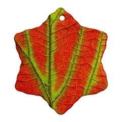 Unique Leaf Ornament (Snowflake)