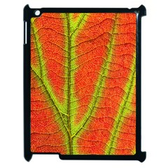 Unique Leaf Apple iPad 2 Case (Black)