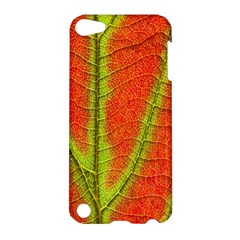 Unique Leaf Apple iPod Touch 5 Hardshell Case