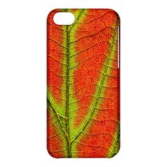 Unique Leaf Apple iPhone 5C Hardshell Case
