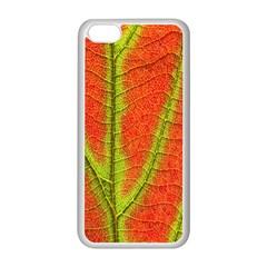Unique Leaf Apple iPhone 5C Seamless Case (White)