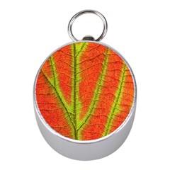 Unique Leaf Mini Silver Compasses