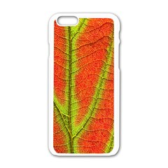 Unique Leaf Apple iPhone 6/6S White Enamel Case