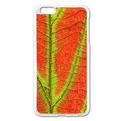 Unique Leaf Apple iPhone 6 Plus/6S Plus Enamel White Case