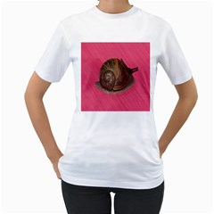 Snail Pink Background Women s T-Shirt (White) (Two Sided)