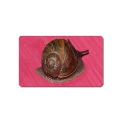 Snail Pink Background Magnet (Name Card)