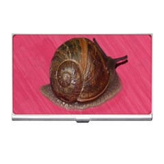 Snail Pink Background Business Card Holders