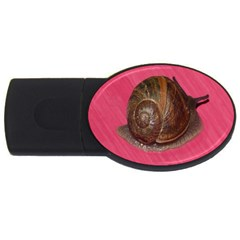 Snail Pink Background USB Flash Drive Oval (2 GB)