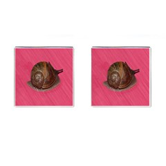 Snail Pink Background Cufflinks (Square)
