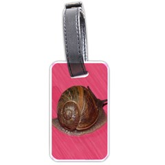 Snail Pink Background Luggage Tags (Two Sides)