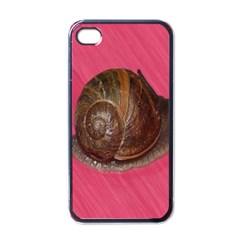 Snail Pink Background Apple iPhone 4 Case (Black)