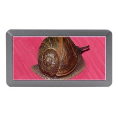 Snail Pink Background Memory Card Reader (Mini)