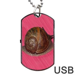 Snail Pink Background Dog Tag USB Flash (Two Sides)