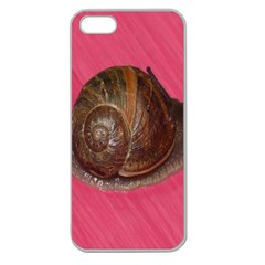 Snail Pink Background Apple Seamless iPhone 5 Case (Clear)