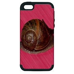 Snail Pink Background Apple iPhone 5 Hardshell Case (PC+Silicone)