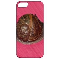 Snail Pink Background Apple iPhone 5 Classic Hardshell Case