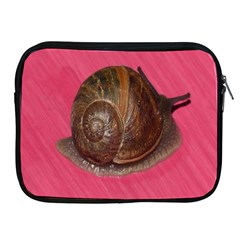 Snail Pink Background Apple iPad 2/3/4 Zipper Cases