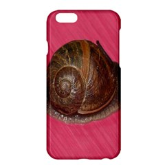 Snail Pink Background Apple iPhone 6 Plus/6S Plus Hardshell Case