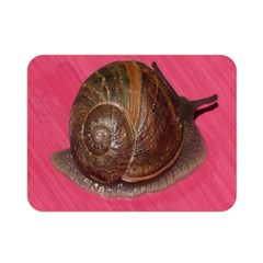 Snail Pink Background Double Sided Flano Blanket (Mini)