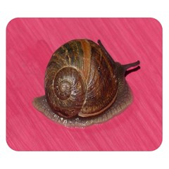 Snail Pink Background Double Sided Flano Blanket (Small)