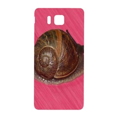Snail Pink Background Samsung Galaxy Alpha Hardshell Back Case