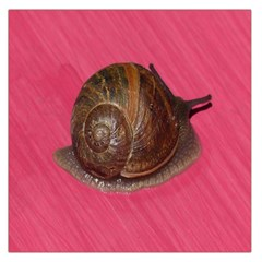 Snail Pink Background Large Satin Scarf (Square)