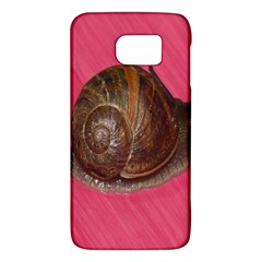 Snail Pink Background Galaxy S6