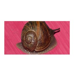 Snail Pink Background Satin Wrap