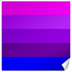 Transgender Flag Canvas 12  x 12