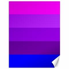 Transgender Flag Canvas 12  x 16
