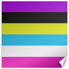 Bigender Flag Canvas 12  X 12