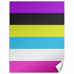 Bigender Flag Canvas 12  x 16