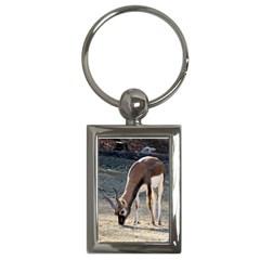 Antelope Key Chain (Rectangle)