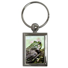 Frog Key Chain (Rectangle)