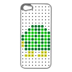 Colored Turtle Apple iPhone 5 Case (Silver)