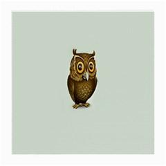 Owl Medium Glasses Cloth