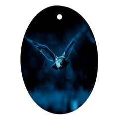 Night Owl Wide Ornament (Oval)