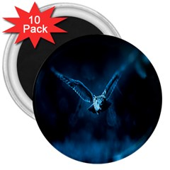 Night Owl Wide 3  Magnets (10 pack)