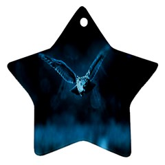 Night Owl Wide Star Ornament (Two Sides)