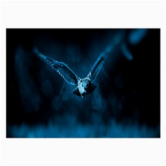 Night Owl Wide Large Glasses Cloth