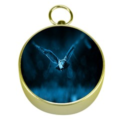 Night Owl Wide Gold Compasses