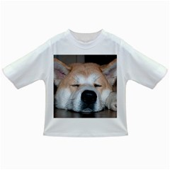 Akita Sleeping Infant/Toddler T-Shirts