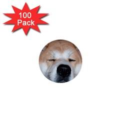 Akita Sleeping 1  Mini Buttons (100 pack)