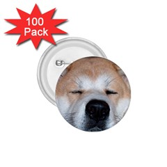 Akita Sleeping 1.75  Buttons (100 pack)