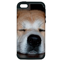 Akita Sleeping Apple iPhone 5 Hardshell Case (PC+Silicone)